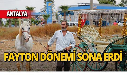 Antalya'da fayton dönemi bitti, atlar yeni yuvalarına getirildi