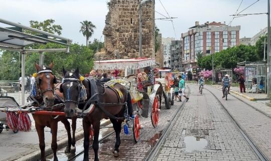 Antalya faytoncular son kez Antalya sokaklarındaydı