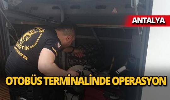 Antalya Otobüs Terminalinde ele geçirildi