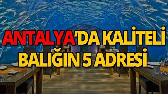 Antalya'nın birbirinden güzel balık restoranları