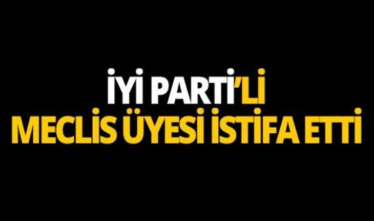 İYİ Parti'li meclis üyesi istifa etti