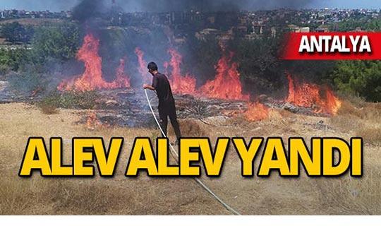 Kaymakamlık konutu yakınında yangın!