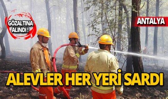 Ocaktan çıkan yangın ormana yayıldı!