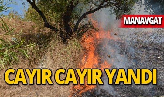 Antalya bugün ikinci kez yanıyor!