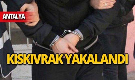 Antalya'da operasyon: Üzerinde ele geçirildi!