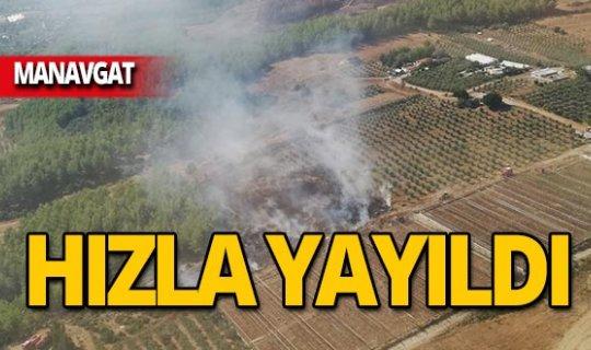Manavgat'ta çıkan yangın hızla yayıldı!