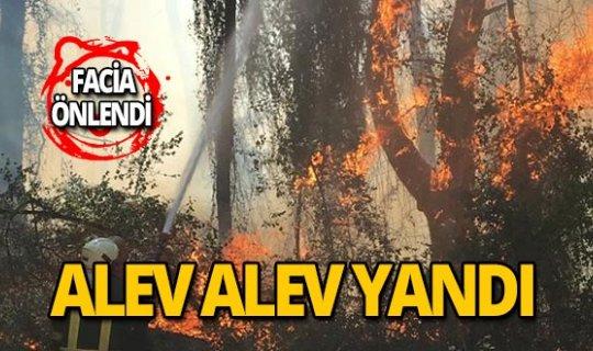 Yerleşim yerlerine yakın alanda yangın!