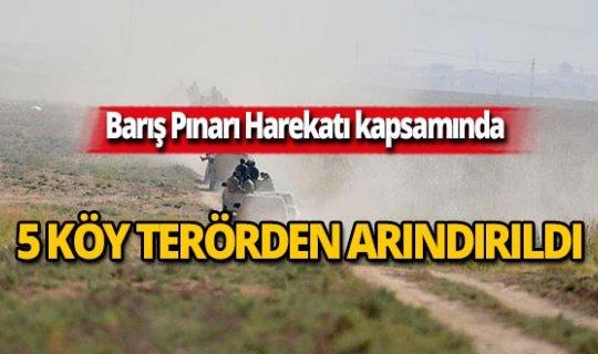 5 köy terörden arındırıldı