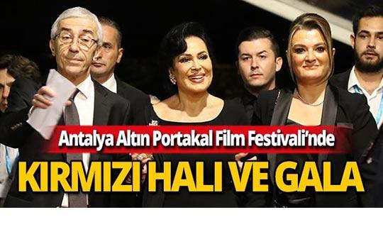 Altın Portakal Film Festivali, kırmızı halı ve açılış galasıyla başladı