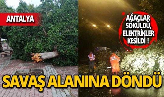 Antalya'da ağaçlar kökünden söküldü!