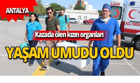 Ayşenur Kurnaz'ın organları 5 kişiye umut oldu