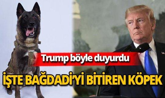 Trump duyurdu: İşte Bağdadi'yi bitiren köpek!