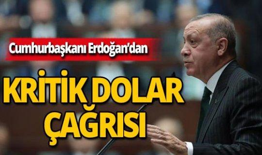 Erdoğan'dan kritik dolar çağrısı