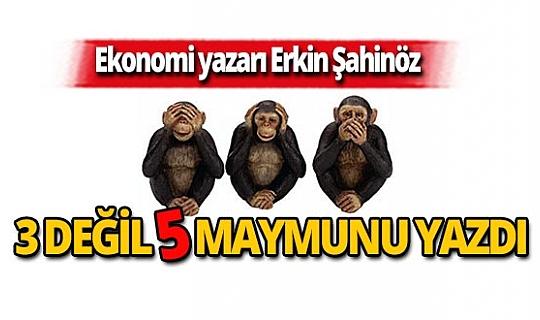 Erkin Şahinöz Beş Maymun'u yazdı