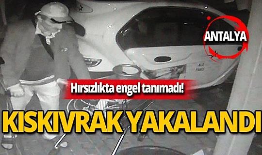 Hırsızlıkta engel tanımadı! Engelli şahıs hırsızlık yaparken yakalandı