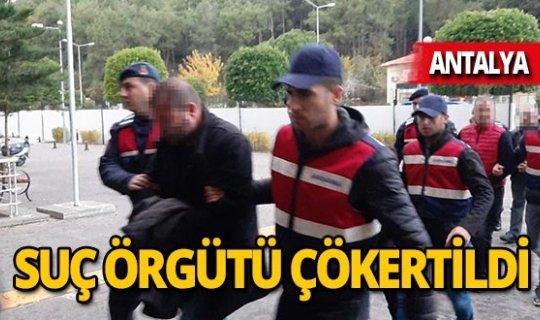 Suç örgütüne operasyon: 8 gözaltı