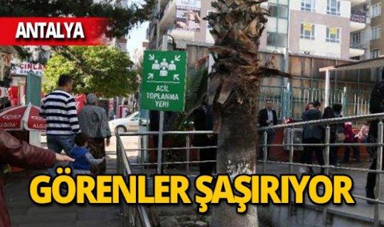 Antalya'daki acil toplanma yeri görenleri şaşırttı