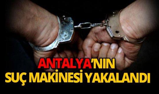 Antalya'nın suç makinesi bakın nasıl yakalandı