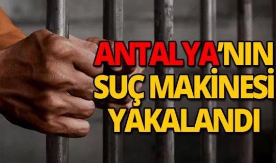 Antalya'nın suç makinesi işte böyle yakalandı
