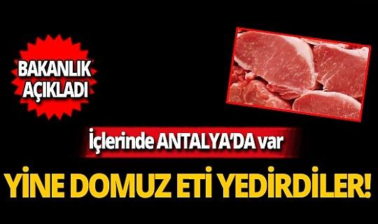 Bakanlık açıkladı! Antalyalılara yine domuz eti yedirdiler