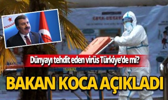 Dünyayı tehdit eden virüs Türkiye'de mi?