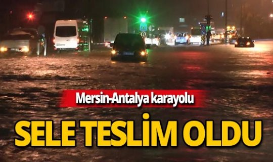 Mersin-Antalya yolunda perişan oldular