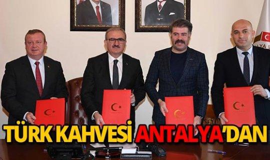 Türkiye'nin ilk ticari kahve üretimi Antalya'da  başlıyor