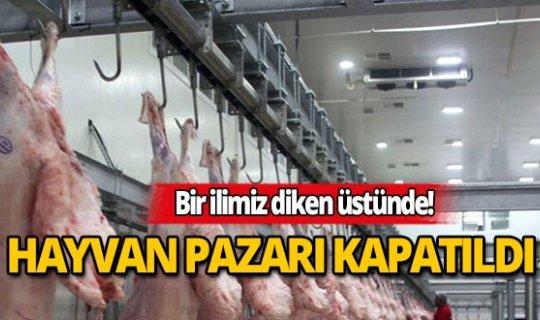 Hayvan pazarı kapatıldı!