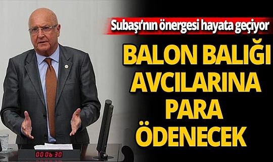 Milletvekili Hasan Subaşı'nın Balon balığı önergesini Bakanlık kabul etti