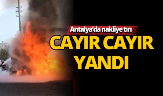 Antalya'da nakliye tırı cayır cayır yandı
