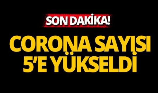 Türkiye'de coronavirüs vaka sayısı 5'e çıktı