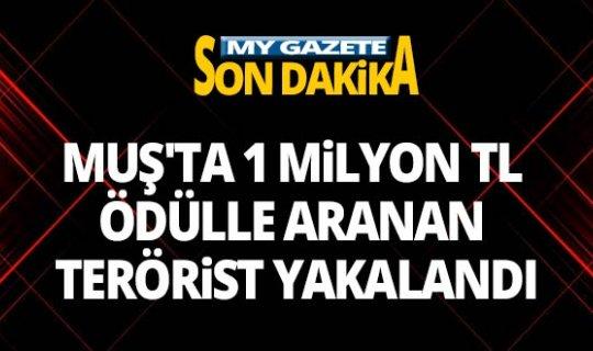 1 milyon TL ödülle aranan terörist yakalandı