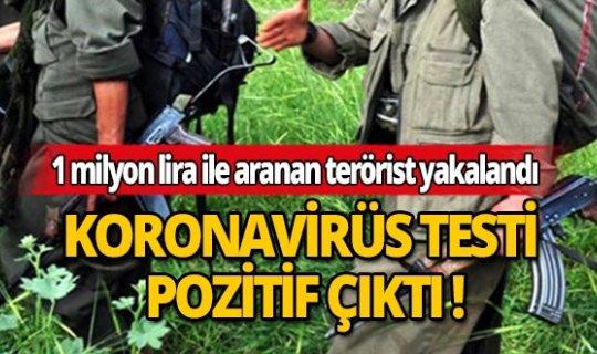 1 milyon TL ödülle aranan teröristin korona virüs testi pozitif çıktı
