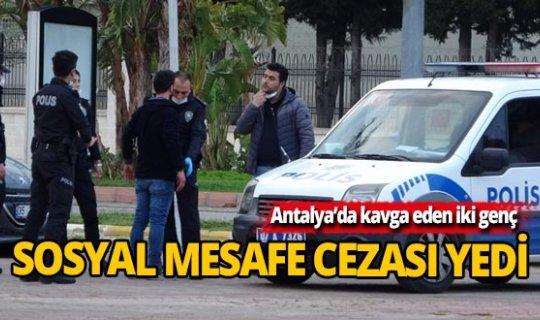 Antalya'da kavga ettiler, sosyal mesafe cezası yediler