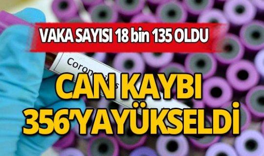 Türkiye'de son 24 saatte korona virüsten 79 kişi hayatını kaybetti, vaka sayısı 18 bin 135'e yükseldi