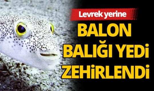 Antalya'da balon balığı yiyen 3 kişi zehirlendi