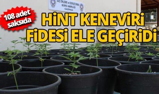 Antalya'da ormanlık alanda uyuşturucu operasyonu