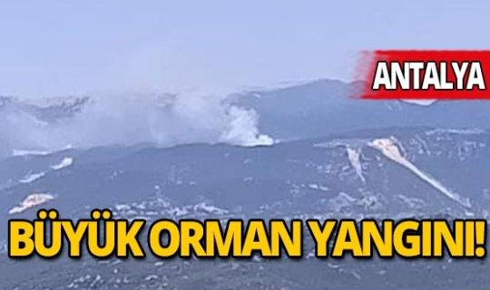Antalya'daki orman yangını 6 saat sonra kontrol altına alındı!