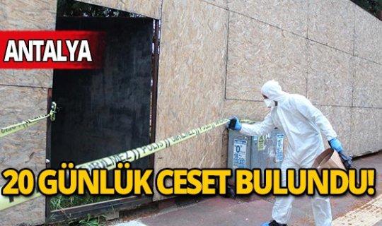 Antalya'da ağaçta asılı 20 günlük ceset bulundu
