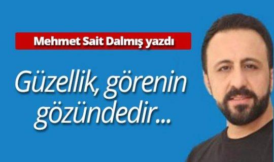 """Mehmet Sait Dalmış yazdı: """"Güzellik, görenin gözündedir..."""""""