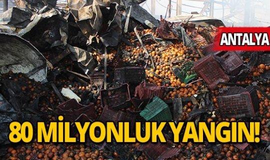 Antalya'da büyük yangında zarar yaklaşık 80 milyon lira