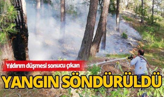 Antalya'da yıldırım düşmesi sonucu yangın çıktı
