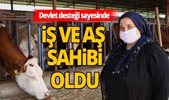 Devlet desteği Antalyalı Safiye'ye iş ve aş oldu