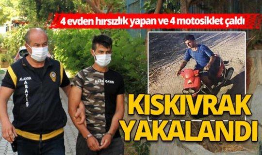 Antalya Haber: Alanya'da 4 evden hırsızlık yapan ve 4 motosiklet çalan şüpheli yakalandı