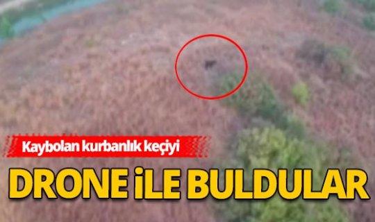 Antalya Haber: Kaybolan kurbanlık dronerle bulundu
