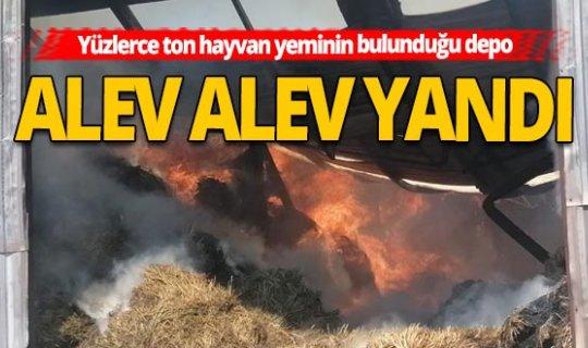 Antalya Manavgat Haber: Hayvan yemlerinin bulunduğu depo yandı