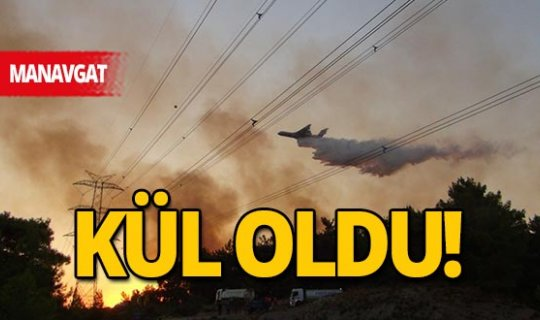 Manavgat'taki orman yangınlarında 13 hektarlık alan zarar gördü
