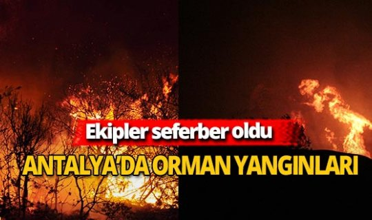 Antalya'da iki farklı alanda yangın çıktı