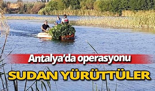 Antalya haber: Antalya'da ilginç operasyon