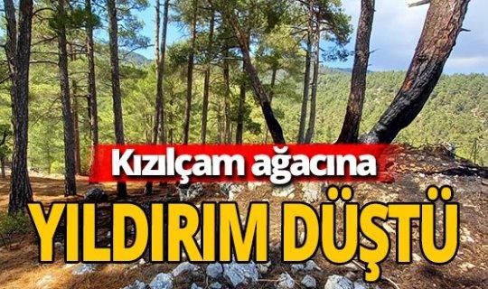 Antalya haber: Yıldırım düştü, yangın çıktı